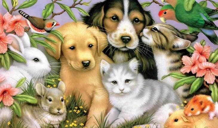 810 Koleksi Gambar Hewan Hewan Peliharaan HD Terbaik